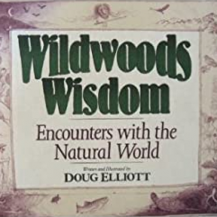 Wildwoods Wisdom book cover featuring nature illustrations